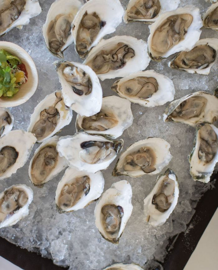 Oysters on Ice at Castle Hotel and Spa